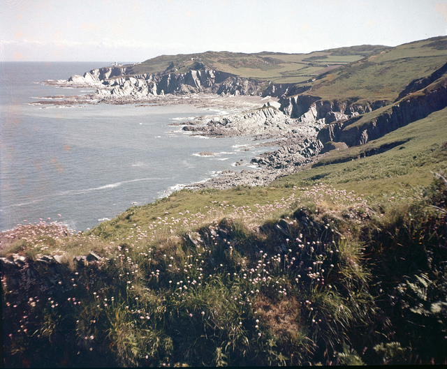 morte point, ideal for dog walks